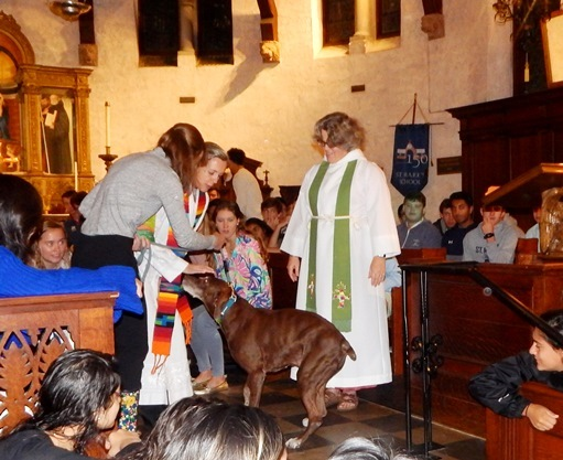 Chapel Celebrates Annual Blessing of the Animals